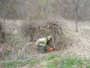 Greg taking down the poison ivy monster