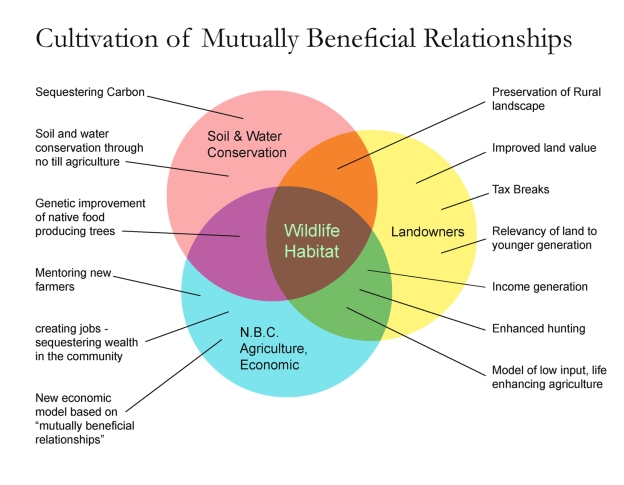the mutual benefits of NBC