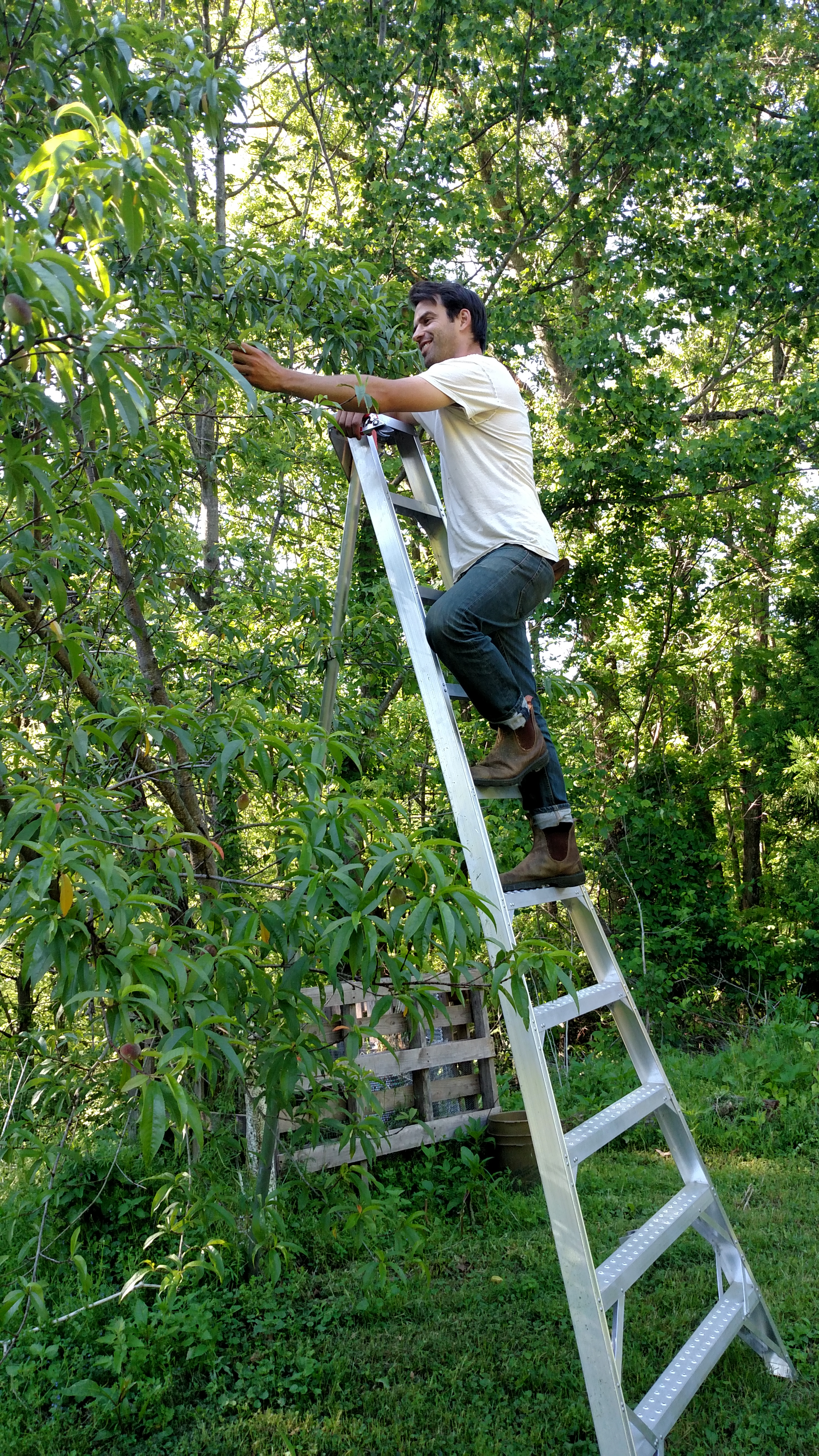justin on ladder
